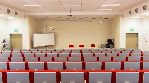 情報、経営、商学―― 多様な分野で国際系学部が開設