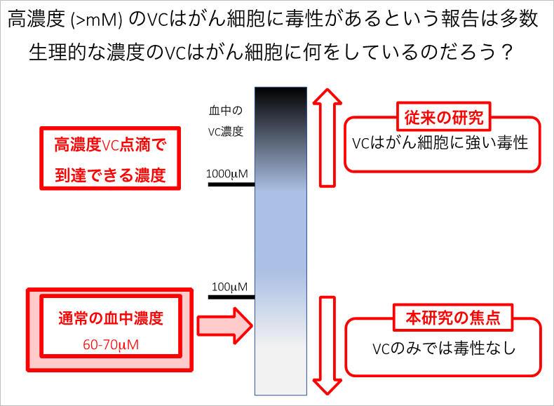 ビタミンCと過酸化水素ががん細胞を除去 ~東京工科大学・佐藤拓己教授らの研究チームが低濃度ビタミンCの新たな機能を発見
